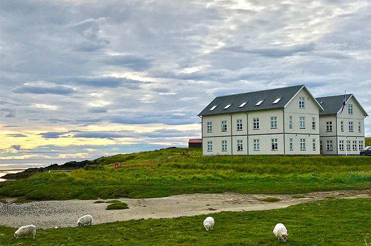 Hótel Búðir cozy boutique hotel in Iceland