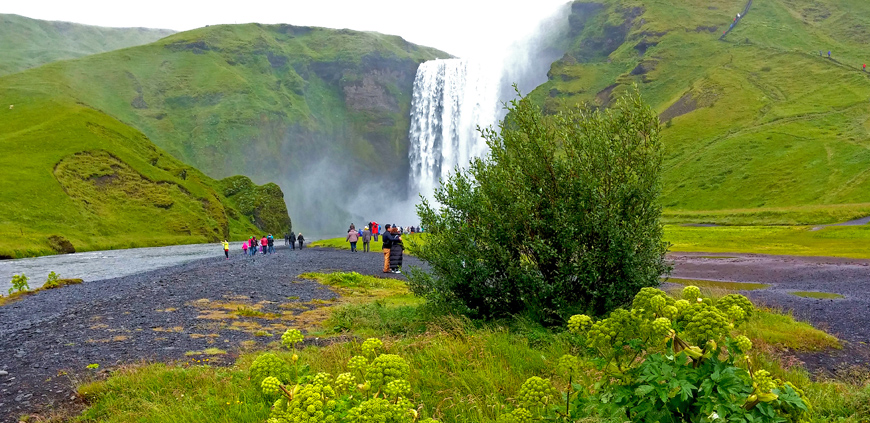 Summer day by Skógafoss waterfall